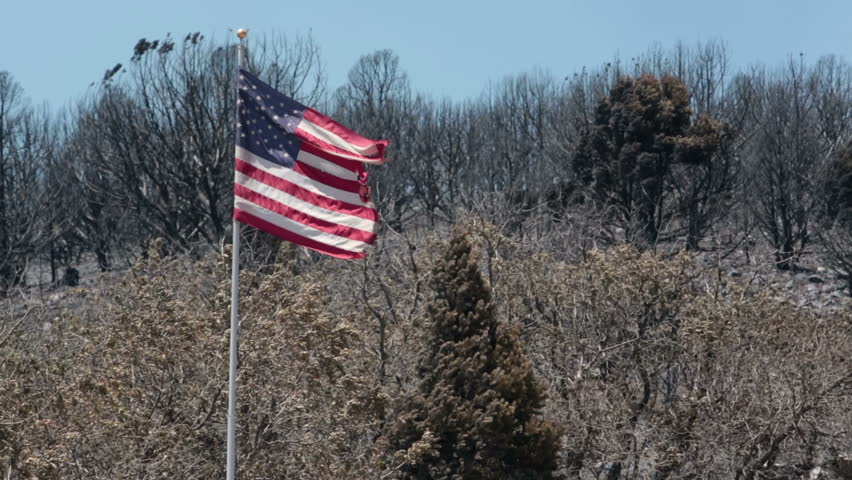 USA Flag torn over wildfire destruction. Charred and burnt homes and business. Blaze destroyed dozens of home. Wood Hollow Utah. Drought with strong summer winds | Shutterstock HD Video #2494754