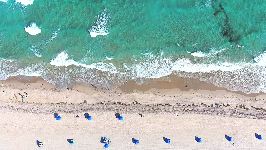 Video loop with aerial footage showing bird eye view with people walking and getting tan on a tropical Florida beach under blue umbrellas and turquoise ocean waves breaking against the coastal line