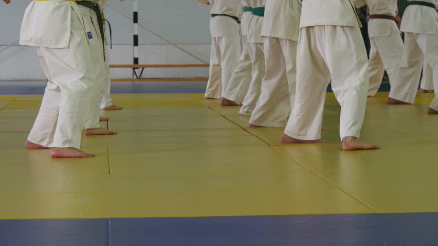 Group of children in kimono standing on tatami on martial arts training seminar