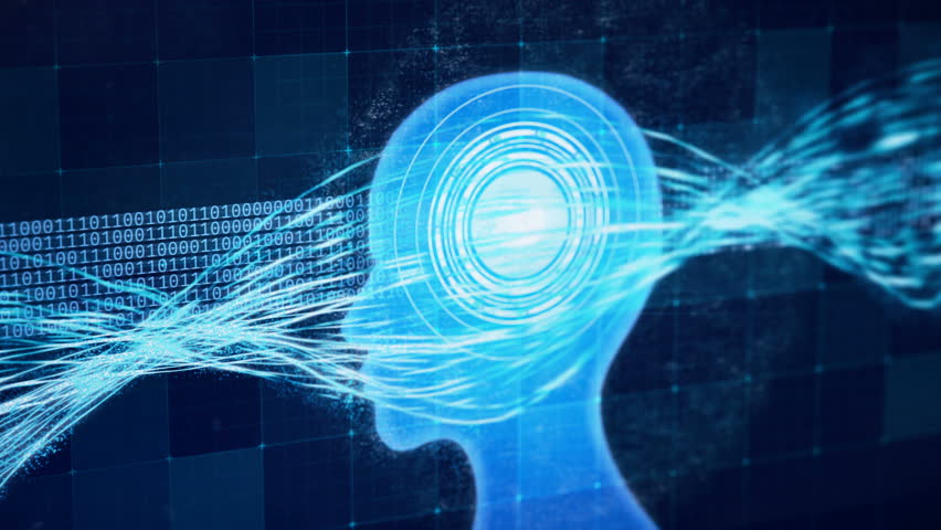 High Functioning Brain Processing Information Memory Boost Perfect