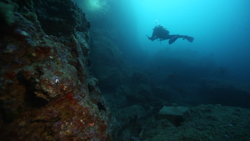Scuba diver exploring Rikoriko cave, Poor Knights Islands | Shutterstock HD Video #25562300