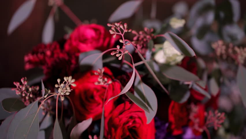 Flashes of camera reflected on red bouquet of roses burgundy chrysanthemums. Wedding fresh bouquet photo session bordo vinous flowers, branches with leaves berries indoors. Close up shooting of #25642457