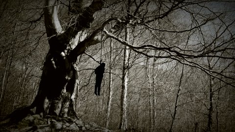 hangman in gloomy forest, gallows on an old tree