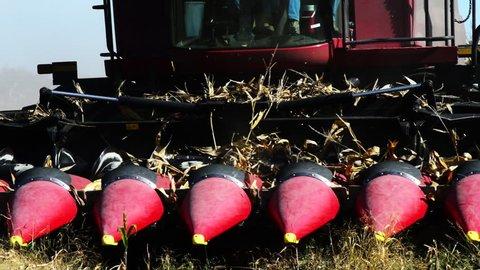 Corn harvester runs over stalks