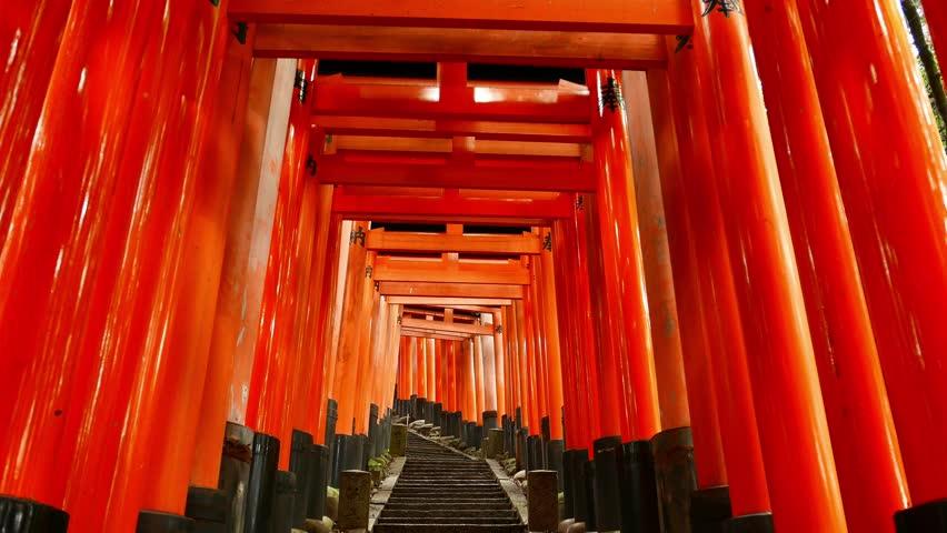 Torii gates glide in Kyoto, Japan