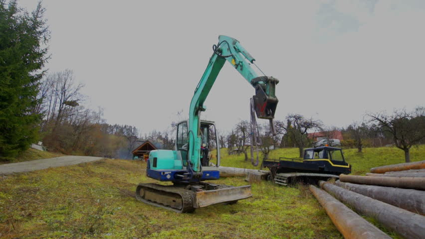 A crane is approaching the tree trunks that are gathered together on one pile. A man is supervising the process. | Shutterstock HD Video #25979954