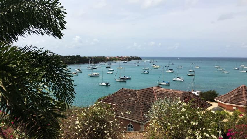 Tropical hillside overlooking a bay in St. George's parish, Grenada, Caribbean.