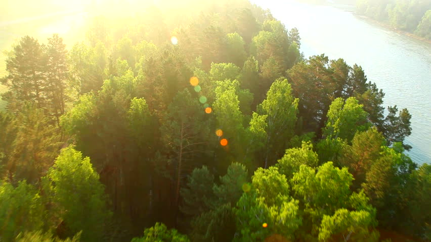 Aerial View. Flying over the beautiful Forest trees and River. Aerial camera shot.