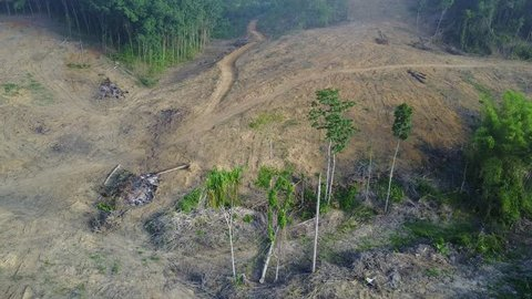Deforestation. Aerial drone view of forest destroyed in Thailand