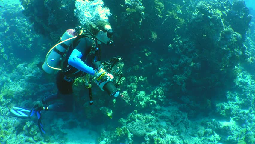 CHARM EL SHEIKH, EGYPT - NOVEMBER 2016: Underwater photographer with a camera swims along the wall of a coral reef, an medium shot. #26172614