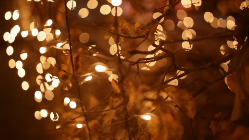 Christmas garlands | Shutterstock HD Video #2619434