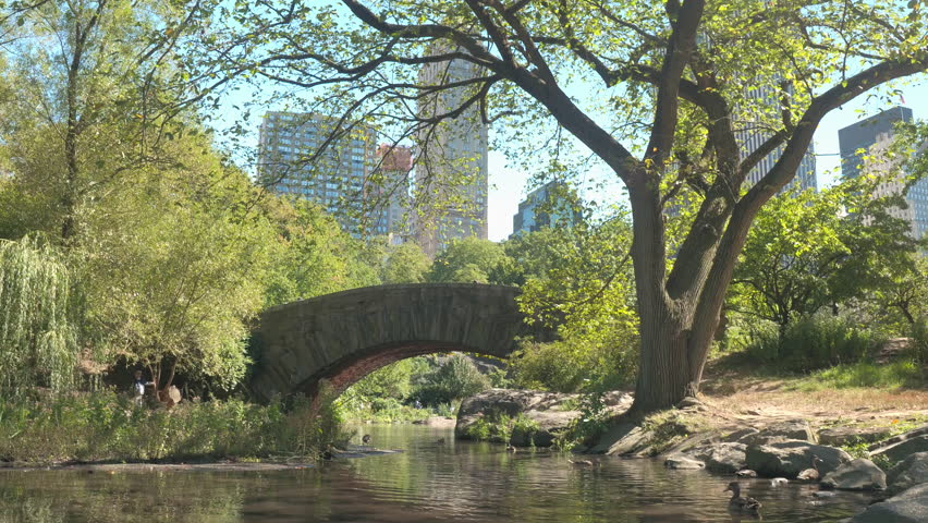 CLOSE UP: Iconic stone Gapstow Bridge above the Pond in sunny NYC Central Park on stunning summer day. Luxury glassy skyscrapers, office buildings, corporate towers creating New York City skyline