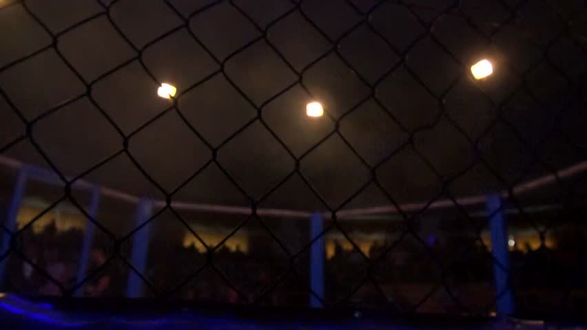 Empty mma cage arena octagon ring for fights. Mixed Martial arts fight. Light beams flashing spotlights. Soft focus blur