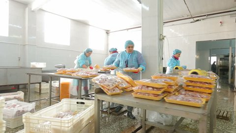 Chicken meat production line. Food processing factory. Chicken meat packaging.