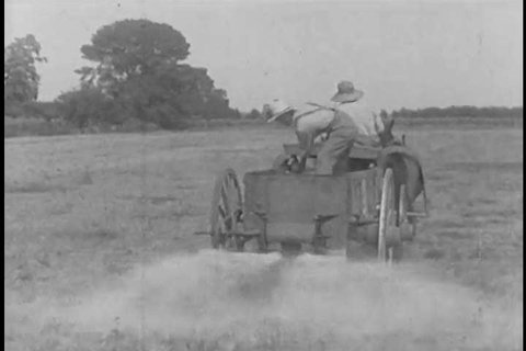1920s: Timber is planted on land unsuitable for crops; limestone is spread to help soured soil; and farmer prepare plant food in the 1920s.