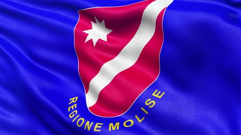 Seamless loop of Molise, the regional flag in Italy waving in the wind.