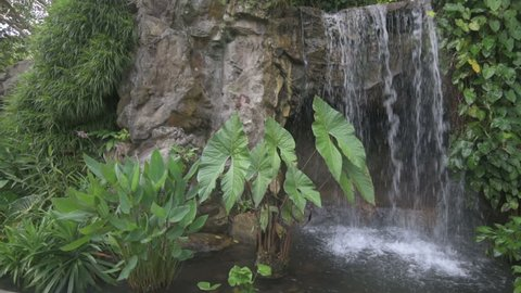 Waterfall in a tropical settings. Singapore Botanic Gardens. Left to right slow panning video.