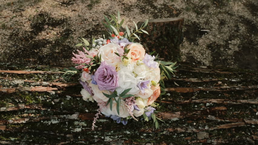Beautiful elegant bouquet lying on the log at the forest. Fresh flower composition on the nature background. | Shutterstock HD Video #27557029