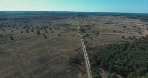 Drone Aerial shot of long road with scattered trees in deserted area in veluwe netherlands