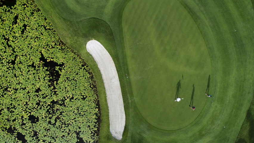 Golf course aerial view. Landscape of a golf court with palm trees in Punta Cana, Dominican Republic