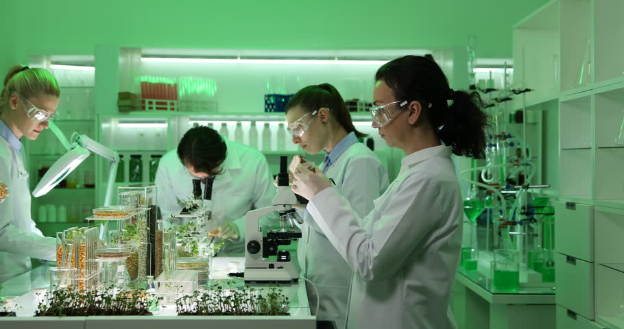 Group of Biochemists Team Work Talking Organic Plants and Seeds in Research Lab | Shutterstock HD Video #28134094