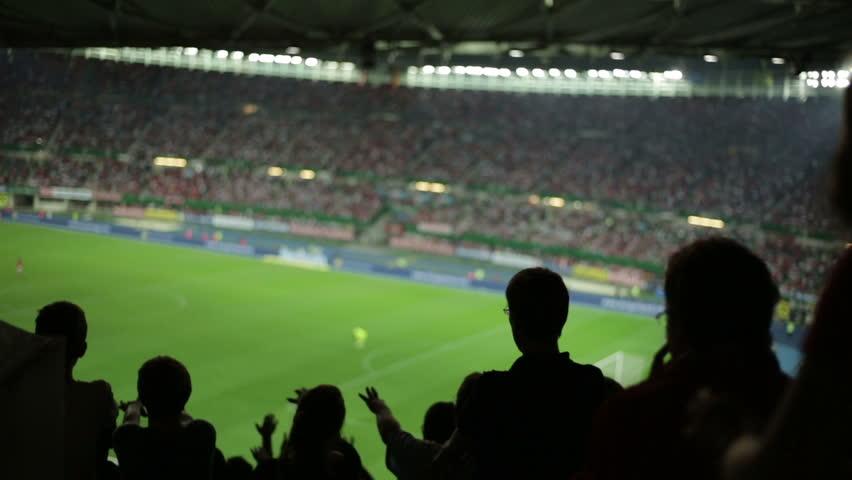 Soccer fans in stadium #2822764