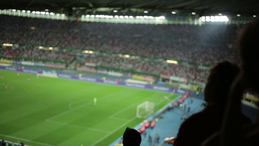 Soccer fans in stadium #2822770