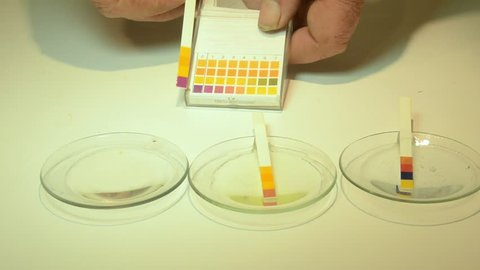 Indicator strips for pH measurement. Four indicator fields change color due to a liquid's  pH balance. Comparing the strip's color change with a reference chart lets the user determine the pH value.