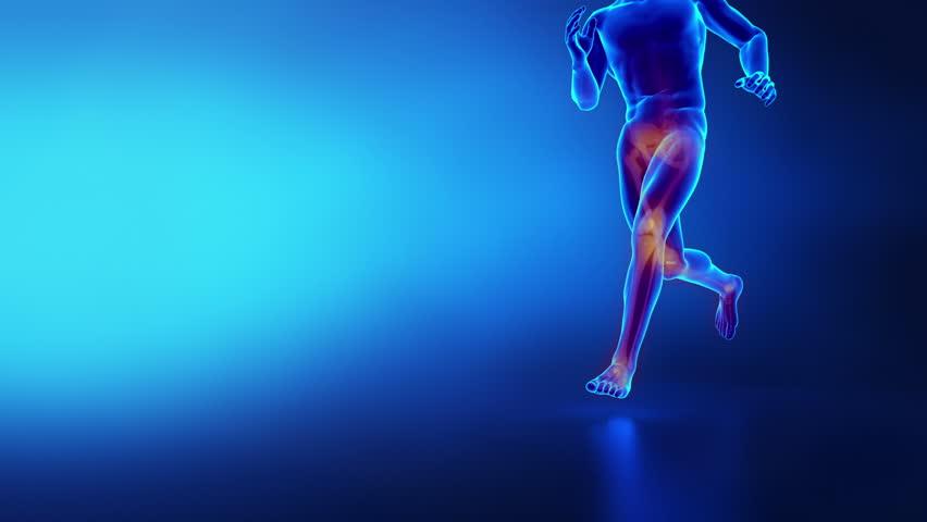 Human knee running man sport  anatomy