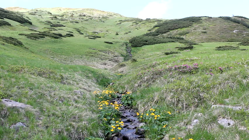 Pure swift mountain stream in the valley, sky forest mountain peaks | Shutterstock HD Video #28415674