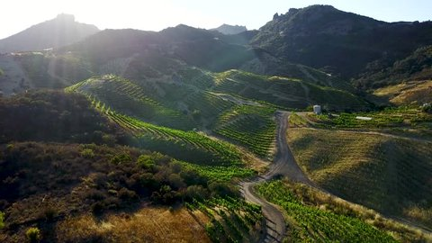 Mountain scenery filmed by drone aerial views in California winery