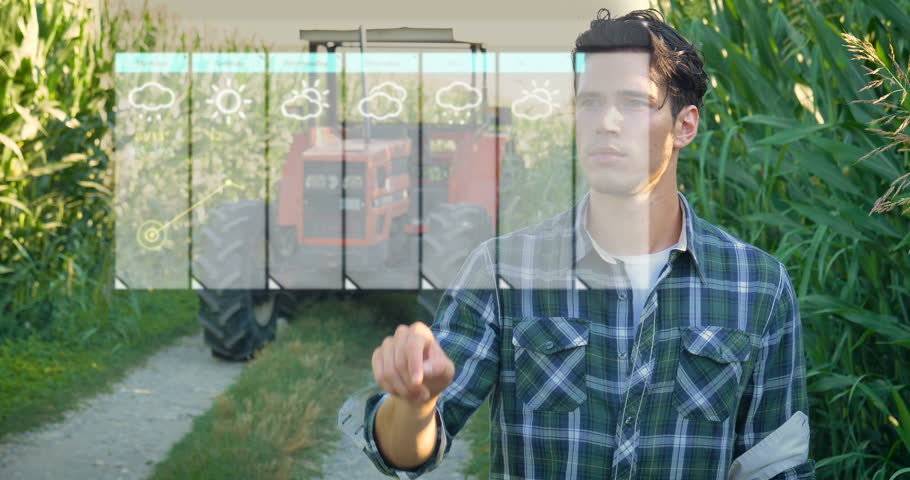 Futuristic young farmer (student) working in the field, tractor, hologram controls the weather, happy, in shirt, corn field Concept ecology transport farmers, natural products, weather forecast future
