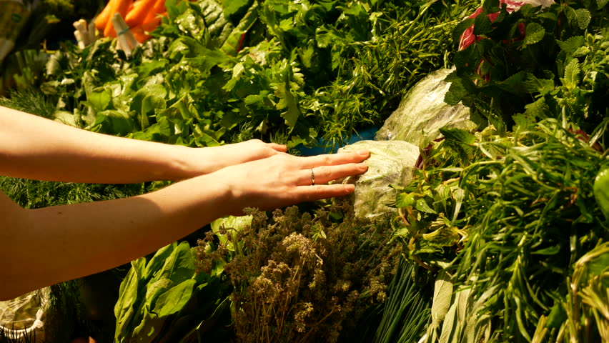 Close-up women take cabbedge near a lot of carrots, parsley, spinach, basil, rennel, dill, tarragon, and melissa at the counter at the market