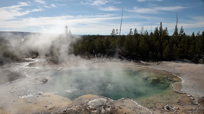 YELLOWSTONE NATIONAL PARK, WYOMING:  One of Americas most visited destinations. Water geyser in the Norris Geyser Basin.  Emerald Springs surrounded by senter. Hot steam geothermal feature.