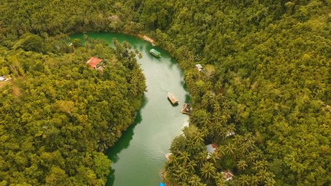 Aerial view, River in the rainforest among the jungle Tropical Loboc river in the rain forest in Asia. Mountain river flows through green forest. Philippines, Bohol. 4K video. Aerial footage