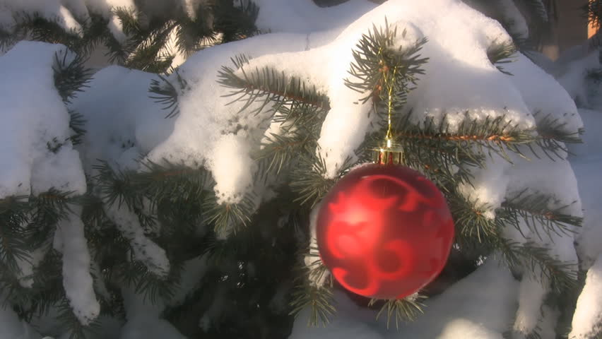 Red Christmas Ornament Hanging On Stock Footage Video 100 Royalty Free 291904 Shutterstock