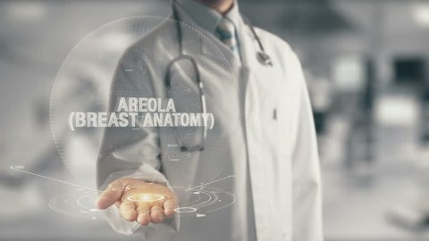 Doctor holding in hand Areola Breast Anatomy