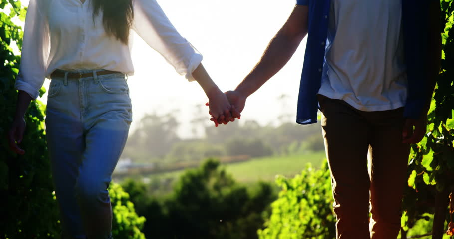 Mid-section of couple holding hands while walking at a vineyard
