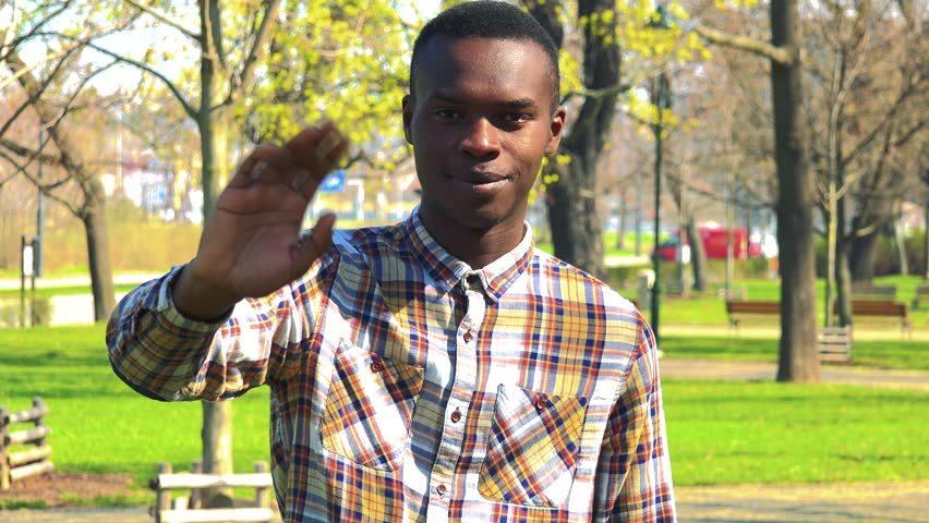 A young black man smiles and waves at the camera in a park on a sunny day #29688334