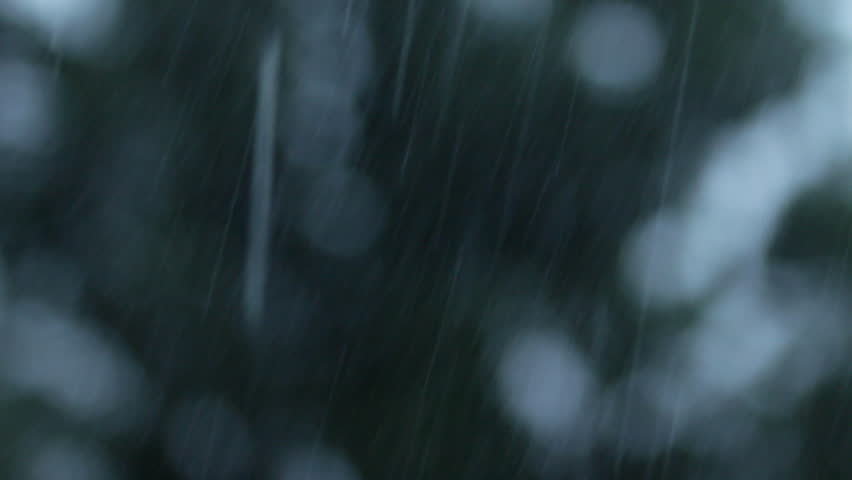 Closeup summer heavy rain falling and tree blowing in the wind in city. Focus on foreground. | Shutterstock HD Video #29770594