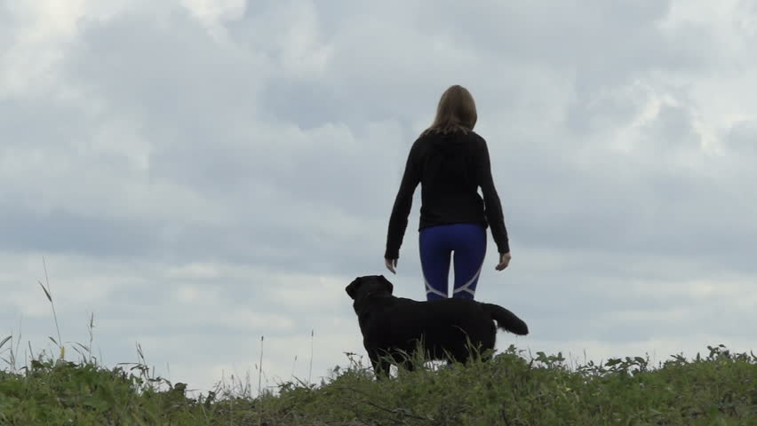 3a395dd96e66e Black labrador retriever dog runs after its owner. Girl in sport leggings.  Girl in sport leggings walking with pet on field with green grass high in  the ...