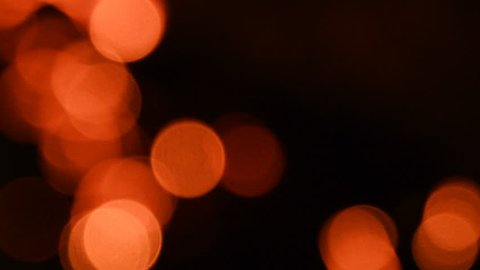 Bokeh from a fire embers in a woodland