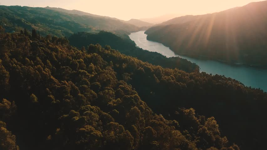Forest Landscape Sunrise Over Water Cinematic Drone Footage Aerial Shot of a Pine Forest and River during Sunset in Europe Portugal Peneda Geres National Park in 4K