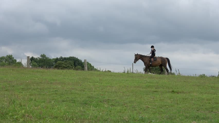 Young blond girl on horse is riding through the meadow and meets another horses. Horizontal pan move.