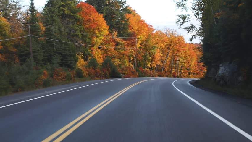 Driving on American highway with trees around in autumn. Empty road in Ontario, Canada, with colorful maple trees during the fall season. Travel and transportation concepts