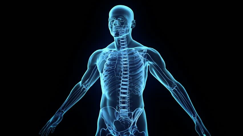 hd human body background blue system 3d transparent ray man loop rotation immune scanning defence shutterstock clip videos royalty