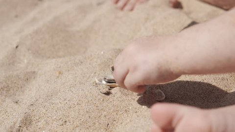 Little cute girl playing with sand and seashells on the beach. Close up in UHD, 4k.