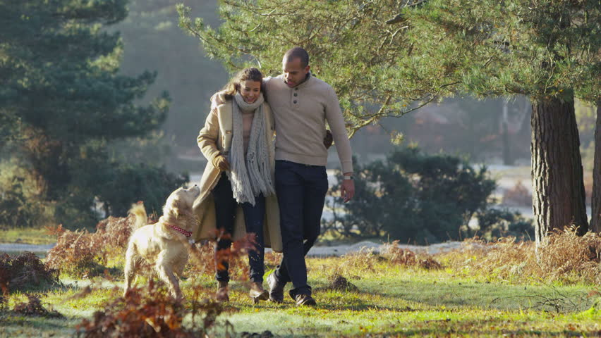 A young couple in love stroll together through a beautiful forest with their pet dog. In slow motion.