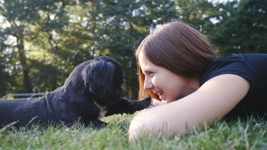 Dog and woman lovely friendship 4K. Wide low angle view of cute black dog and woman in grass lying looking each other. Slow motion shot. | Shutterstock HD Video #31174204
