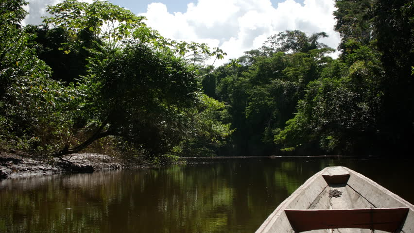San Martín Region, CIRCA June 2017, in Amazon Rainforest in Peru: Sailing the Huallaga River in Peru. | Shutterstock HD Video #31193074